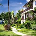 Líbánky na Barbadosu v The Sandpiper
