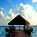 Líbánky na Maledivách v Filitheyo Island Resort