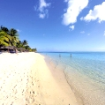 Líbánky na Mauriciu v Le Paradis