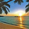 Líbánky na Seychelách v Chalets D´Anse Forbans