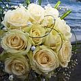 Svatba v Malcesine
